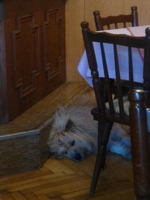 Man soll keine schlafenden Hunde wecken :-)