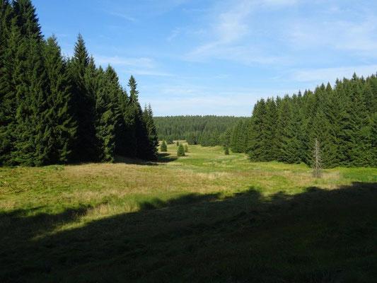 Blick vom Grünen Graben ins obere Schwarzwassertal