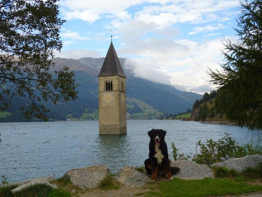 Einsam ragt der Kirchturm des versunkenen Dorfes Graun aus dem Reschensee