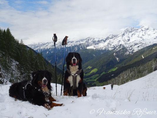 Vreni und Selma posieren im Schnee
