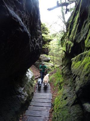 Aufstieg zum Kuhstall