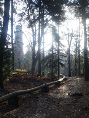 Wintersonne auf dem Pfaffensteinplateau