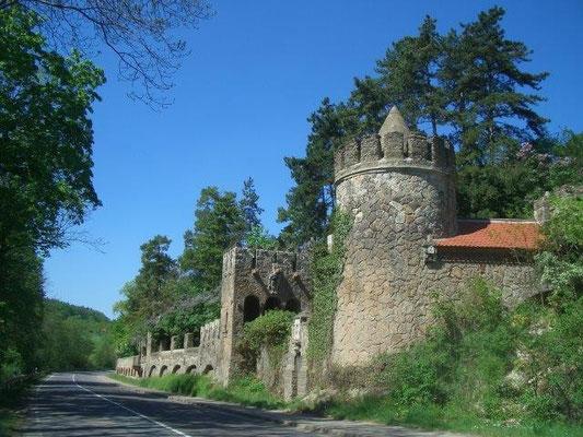Die Rosenburg bei Ballenstedt