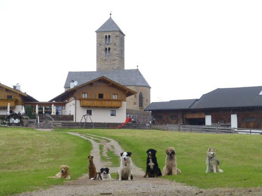 Unsere vierbeinigen Wanderer am Kirchlein St. Jakob Langfenn