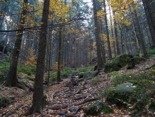 Aufstieg zur Kleinen Bastei