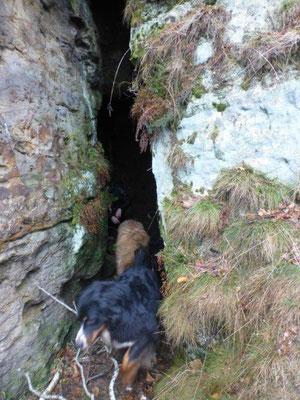 Die Höhle am Sattelberg
