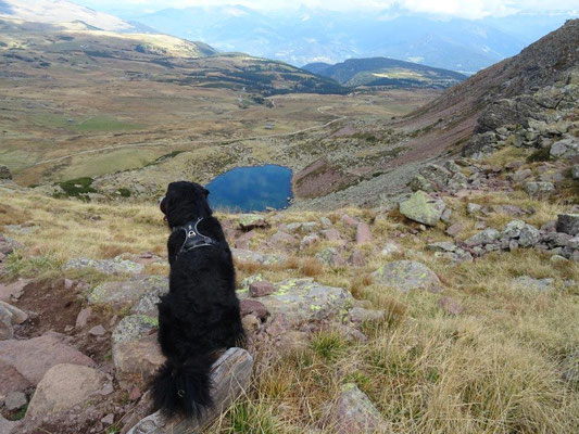 Vreni bestaunt den Totensee