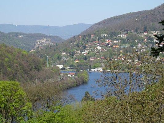 Blick auf die Elbe mit der Burg Schreckenstein