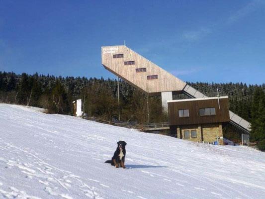 Aufden Fichtelberg-Sprungschanzen werden regelmäßig internationale Wettbewerbe ausgetragen.