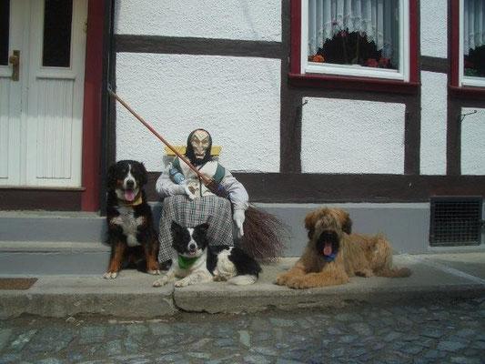 Hexen gehören zum Harz wie Hunde zum Wandern :-)