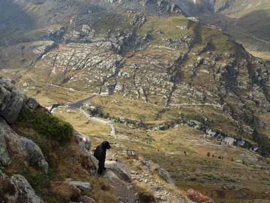 Abstieg von der Marteller Hütte