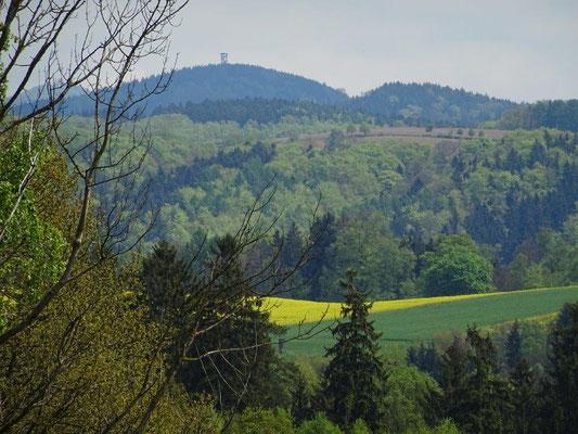 Blick zum Weifberg bei Hinterhermsdorf