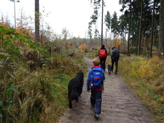 Auf dem Weg zum Winterberg