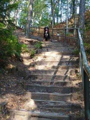 Aufstieg zum Rauenstein