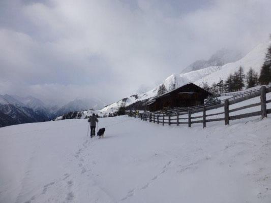 Wintertraum an der Gottschaunalm