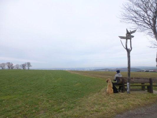 Aussichtsbank kurz vor Berbisdorf
