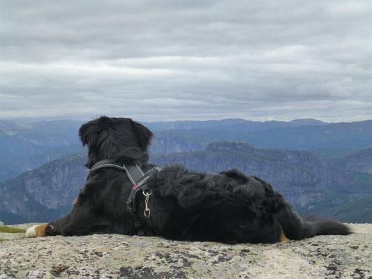 Die Berge und Hochflächen rund um Valle bieten immer wieder atemberaubende Ausblicke