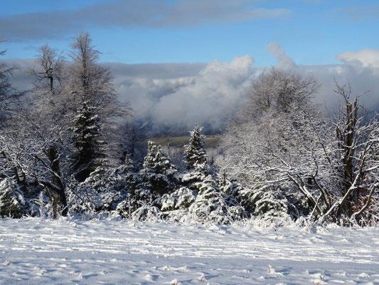 Während wir bei strahlendem Sonnenschein im Schnee standen, war es ringsum schneefrei und trübe