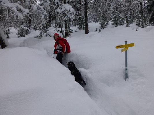 ... bevor es durch tiefen Schnee weiter aufwärts ging