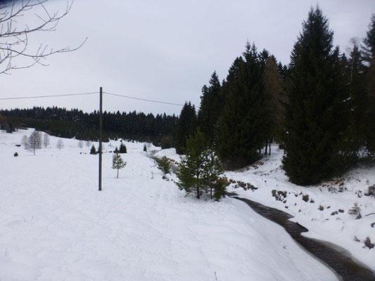 Blick ins verschneite Schwarzwassertal