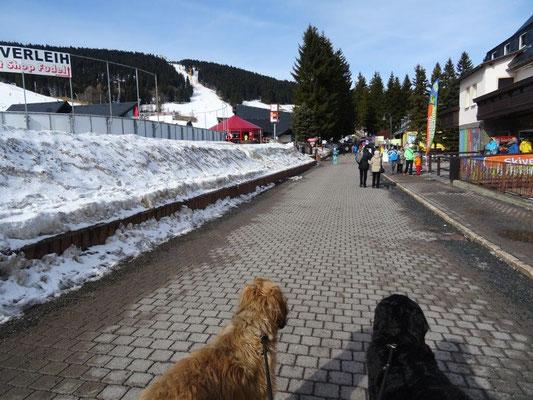 Winterferien in Oberwiesenthal