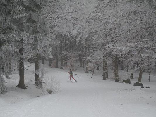 Wintersportler auf dem Rennsteig