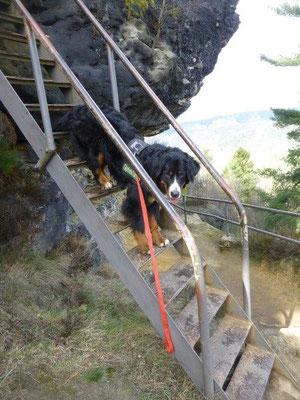 Am Zirkelstein sind mehrere sehr steile Eisentreppen zu überwinden