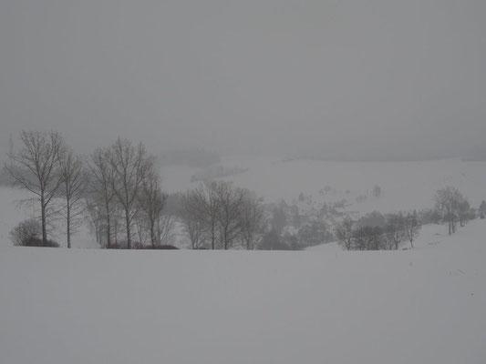 Blick nach Gelenau