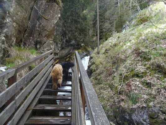 Über hölzerne Treppen, Stege und Brücken führt der Steig immer am Wasserfall entlang.
