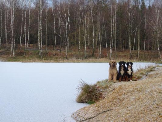 Am Vlčí jezero