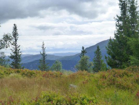 Berglandschaft über dem Setesdal