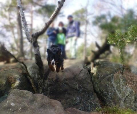 Vreni, der Klippenspringer :-) Solche Felsspalten im Sprung zu überwinden, stellt für unsere agile Hündin keinerlei Hindernis mehr dar..