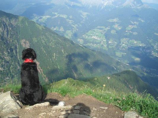 Am Abstieg von der Mutspitze