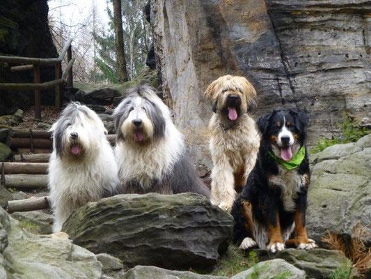 Beim Hundewandern im Bielatal