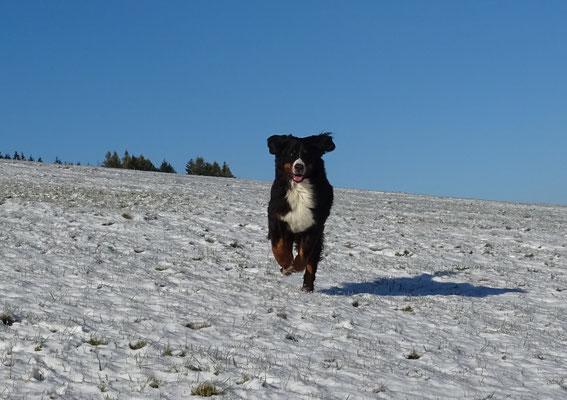 Vreni freut sich über den ersten Schnee