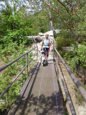 Gitterbrücke auf dem Rauenstein