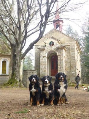 Waldkapelle bei Vyšší Brod
