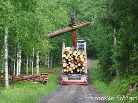 Eine zierliche Frau bei der Arbeit auf ihrem Holzlaster