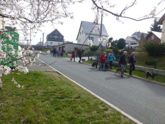 Frühlingserwachen in Markersbach