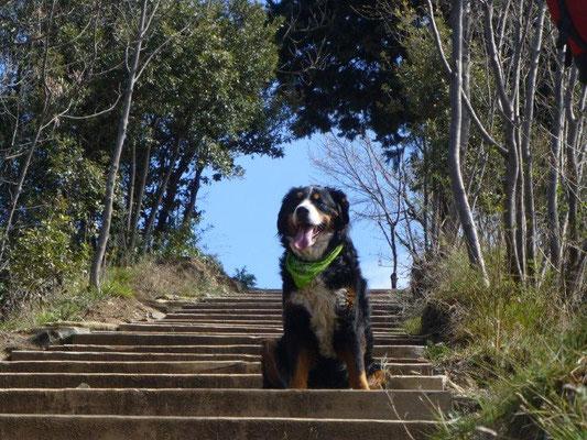 Aufstieg zum Monte Brione
