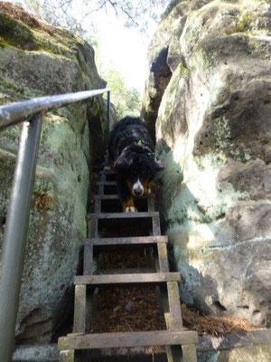Abstieg vom Kleinstein
