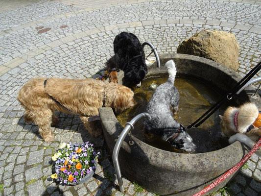 Durst löschen in Lichtenhain