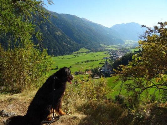 Blick von der Burgruine Reichenberg nach Taufers