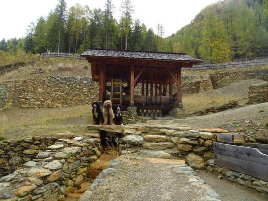 Am Bergbaulehrpfad Prettau