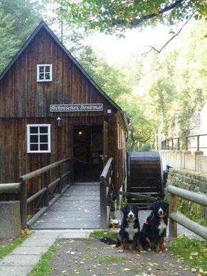 Technisches Denkmal Neumannmühle