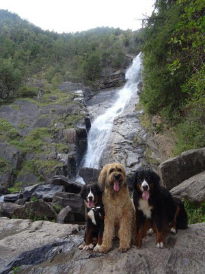 Selma, Nepo und Vreni am unteren Wasserfall in Barbian