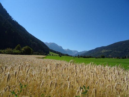 Munstertal bei Taufers - Blick Richtung Schweiz