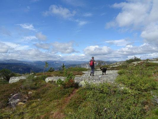 Wandern auf dem Homfjellet