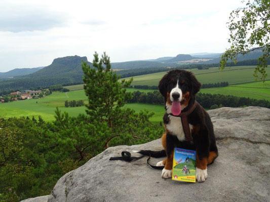 """Im Rother-Wanderbuch """"Wandern mit Hund - Elbsandsteingebirge"""" gibt es jede Menge hundetaugliche Wanderungen für kleine und große Fellnasen."""