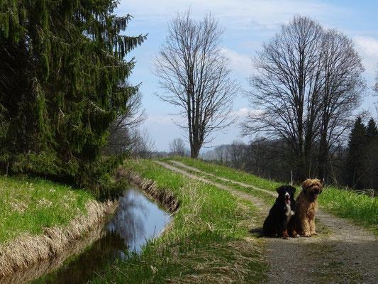 Vreni und Nepomuk am Schwarzenbergischen Schwemmkanal